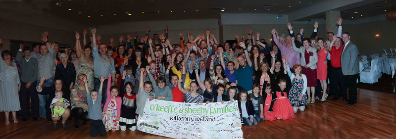 2013 - Ireland - O'Keeffe-Sheehy Gathering